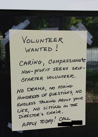 caring-volunteer-wanted