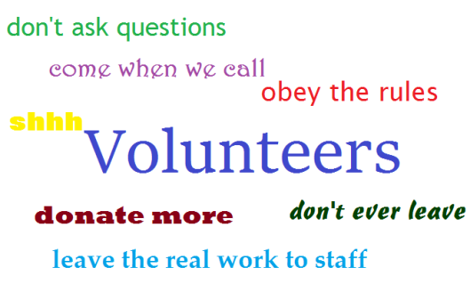 Top 3 Theme Ideas for Volunteer Appreciation Week