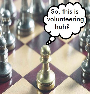 Expecting Different Volunteering Results is Organizational Insanity